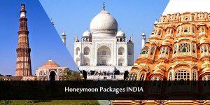 Golden Triangle honeymoon package